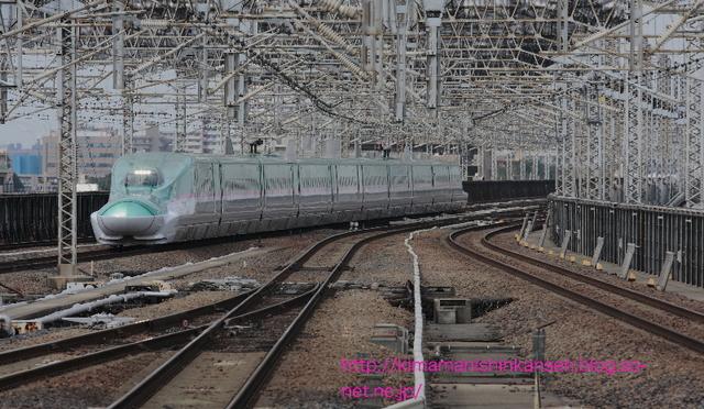 IMG_7780_1.jpg